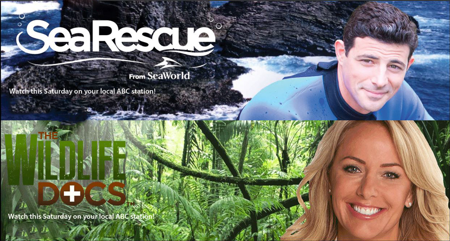 Searescue and wildelife docs on ABC